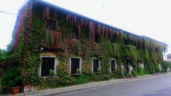 ristorante principato ariis cerimonie46 585x330 Galleria foto cerimonie al Principato di Ariis